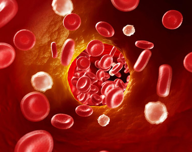 欧米伽-3对血液黏稠的功效